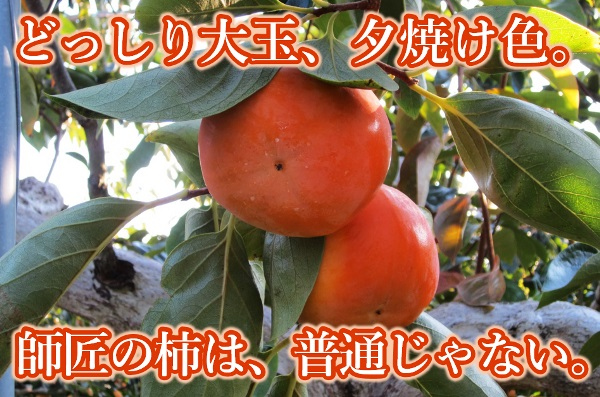 赤井頼光さんの完熟富有柿