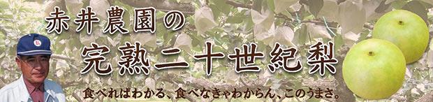 赤井農園の完熟二十世紀梨