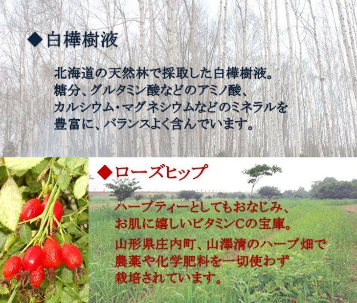 成分-白樺樹液・ローズヒップ