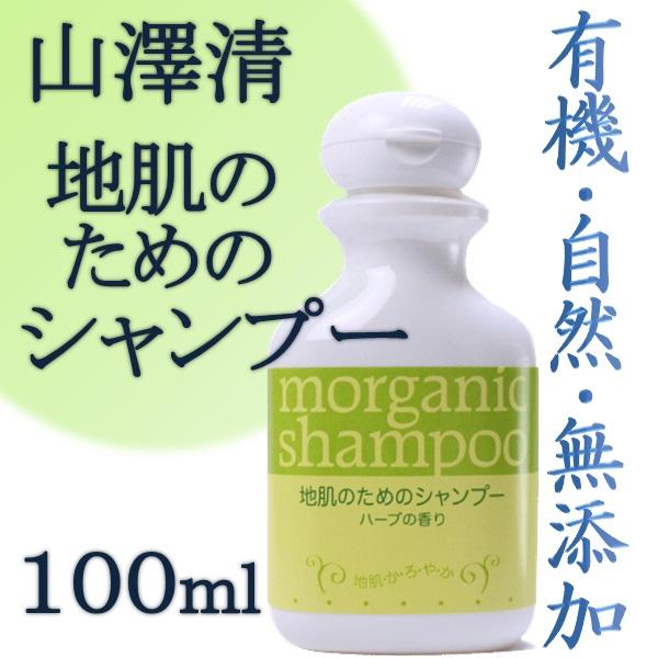 画像1: 山澤清 地肌のためのシャンプー 100ml (1)